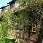 Dachdämmung eines Bauernhauses in 31469 Petershagen